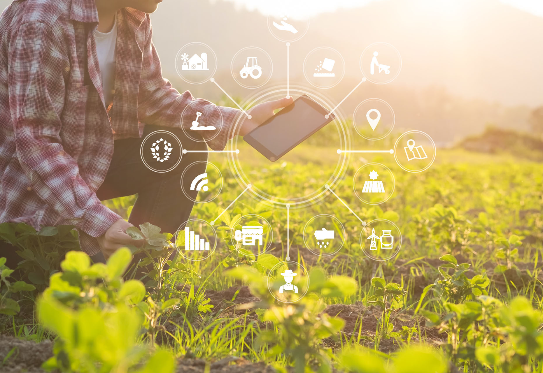 New technologies for Agriculture 4.0
