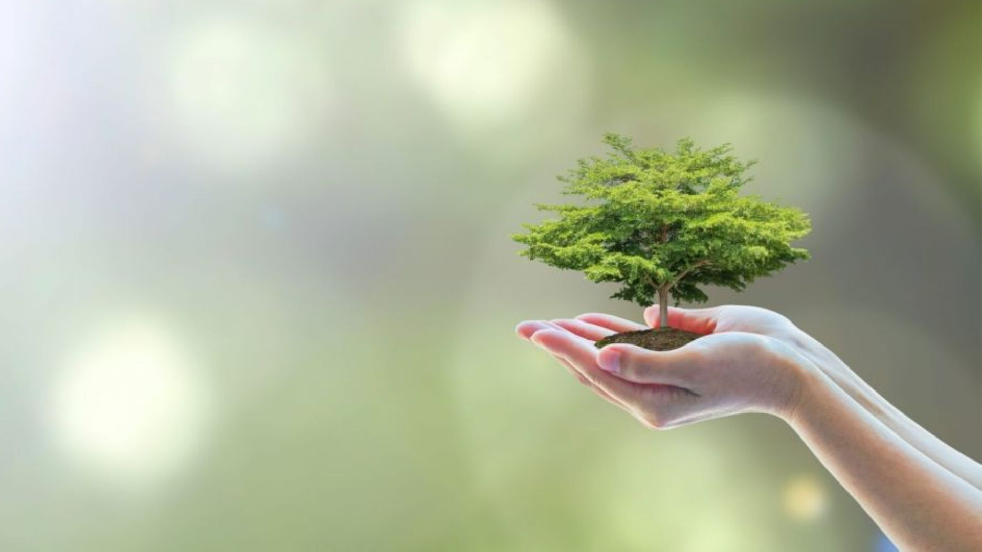 Ecomondo: the green technology expo
