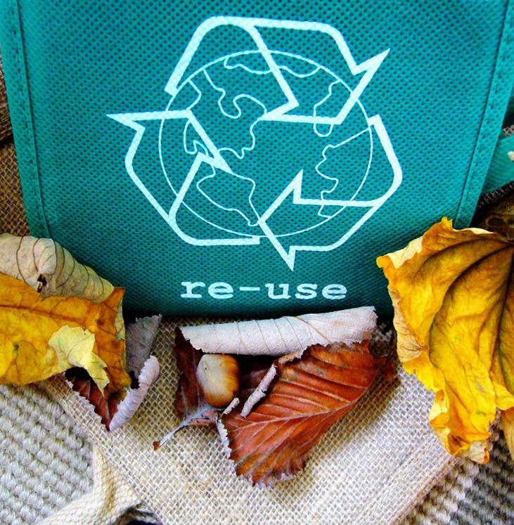 Waste-q1.jpg